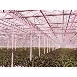 empresa de estruturas metálicas para estufas agrícolas Aricanduva