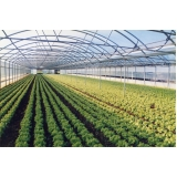Estruturas Metálicas para Estufas Agrícolas